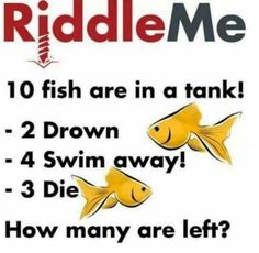 While these impossible riddles can be frustrating when you first read them, nothing beats the satisfaction you'll feel at solving them. Impossible Riddles With Answers, Tricky Riddles With Answers, Riddles To Solve, 10 Riddles, Challenging Riddles, Funny Jokes And Riddles, Brain Teasers Riddles, Brain Teasers For Kids, Challenges