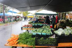 6c7179719 Crossroads Farmers Market is located in a heavily immigrant neighborhood on  the boundary between Langley Park