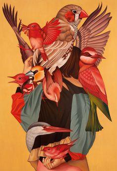 Found Image, birds