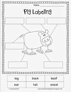 Down on the Farm Math and Literacy Unit. Over 100 pages of farm fun! $