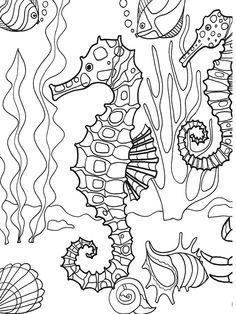 Dover Publications sample page from Under the Sea Adventure Coloring Book - Seahorse.