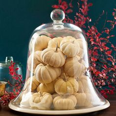 What a great idea....and so simple!  Add pumpkins to a glass cloche!