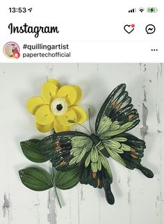 Quilling Butterfly, Cactus Plants, Artist, Instagram, Cacti, Artists, Cactus