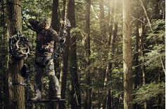 32 fantastic bow hunting tips to help improve your bow hunting season.