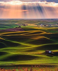 Rolling greens . . Image : @gettyphotography Location: Palouse, Washington . #earthstoke #stoked #planetstoke #naturestoke #nature #peace #powerful #amazing #stoke #beautifuldestinations #earth #nature #amazing #bucketlist #instagood #stoked #summer #sun #fun #roadtrip #night #timelapse #stars