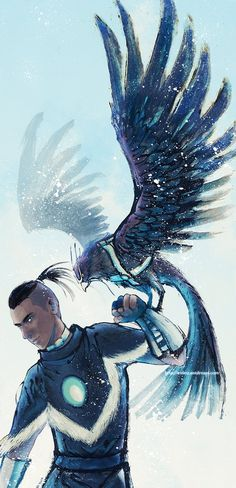 Sokka. ART. The aesthetic of the picture is kinda ruined when you realize that the hawk's name is Hawky.