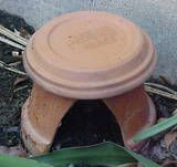 Make a toad house to attract toads to your garden. They love to eat bugs.