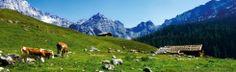 Uriges Salzburger Land