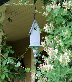 Cute birdhouse idea!