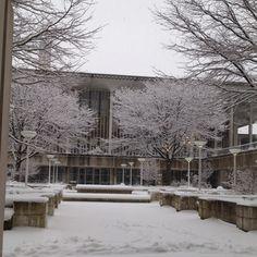 Winter 2012 at University at Albany.