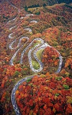 Arkansas Pig Trail in the fall. Arkansas Highway 23 is a north–south state highway in north Arkansas. The route runs miles from US 71 near Elm Park north to the Missouri state line through Ozark and Eureka Springs Belle Image Nature, Beautiful World, Beautiful Places, Romantic Road, Winding Road, Belle Photo, Missouri, Places To See, The Good Place