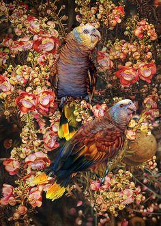 Advice to Emerging Natural History Artists - Interview with Jackson's Art Supplies, UK - Heidi Willis Botanical Art, Botanical Illustration, Amazon Parrot, Jackson's Art, Bird Artwork, Realistic Paintings, Bird Paintings, Art Series, Watercolor Bird