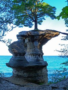 Chapel Rock (iGrand Marais, Michigan, USA) is just after the intersection with the Lakeshore Trail. The tree on the top has a big root that goes across the gap to the mainland and this is were it gets most of it's water and nutrients. It is hard to believe this tree survives on top of this rock on the edge of Lake Superior