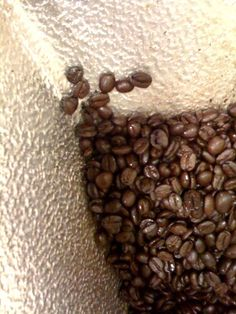 1000 images about garden coffee grinds on pinterest coffee honey