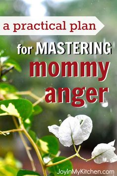 Do your kids ever make you angry? You're not alone and there is hope for change. Here's a practical plan you can follow for mastering mommy anger today.