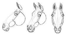 Resultado de imagem para horse drawing reference