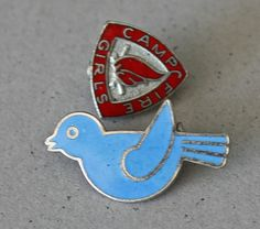 bluebirds campfire girls pins