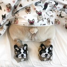 French Bulldog Butt ❤️ in socks and blanket from the Frenchie Store, www.thefrenchiestore.net