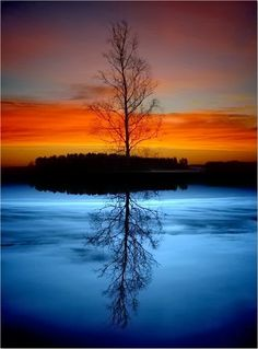 Reflections on Water | Incredible Pictures