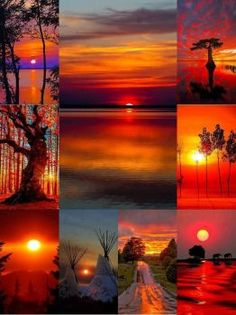 Top 8 Beautiful Pictures Of Sunsets Beautiful Collage, Beautiful Sunset, Beautiful Places, Collages, Cool Pictures, Beautiful Pictures, Mood Colors, Color Collage, Amazing Sunsets