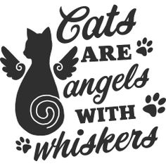 Cats are Angels with Whiskers Baby Apparel, perfect for cat lovers. Crazy Cat Lady, Crazy Cats, Black Cat Quotes, Pet Poems, Cat Sayings, All Black Cat, Words Of Comfort, Cat People, Love Pet