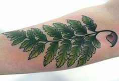 of fern on your body then you should surely go for fern tattoos New Tattoos, Hand Tattoos, Cool Tattoos, Tatoos, Awesome Tattoos, Cherry Tattoos, Flower Tattoos, Feather Tattoo Design, Flower Sleeve