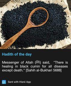 Quotes life islam hadith Ideas for 2019 Islam Beliefs, Islam Hadith, Islamic Teachings, Islam Religion, Islam Muslim, Allah Islam, Islam Quran, Alhamdulillah, Islamic Dua