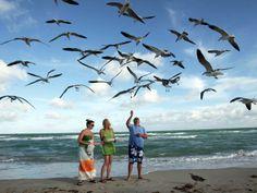 South Beach, em Miami (Foto: Alan Diaz/AP Photo)