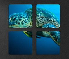 Multi Chromaluxe Underwater