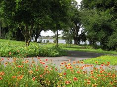 Orlando Health Dr. P. Phillips Hospital. Orange County FL.  Lakeside trail for patients, visitors and staff. AECOM
