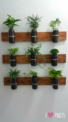 Bear in mind, your indoor garden ought to be as simple as possible to keep squeaky clean. An indoor garden is a superb idea to grow your list for your next move. Growing an indoor garden can be a fantastic… Continue Reading → Hanging Plants, Indoor Plants, Indoor Gardening, Herb Garden Design, Bedroom Plants, Rustic Bathrooms, Small Space Gardening, Balcony Garden, Bottle Crafts