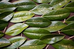 seating plans on leaves--this would be neat with magnolia leaves. Very Southern! :o)