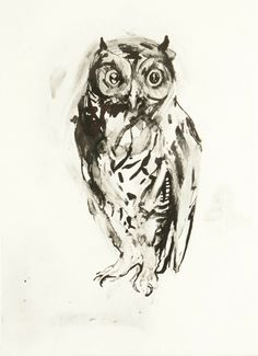 'Owl' by Nicola Hicks, 2006 (etching) Black And White Owl, Exquisite Corpse, Animal Projects, Owl Art, Life Drawing, Art Fair, Pet Birds, Lion Sculpture, Artwork