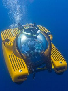Maybe you'll find some treasure or marry a mermaid.  1000/3 submarine (Price on request) by Triton, tritonsubs.com