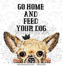 Image result for dogs Typography