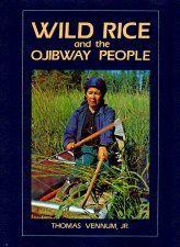 Wild Rice and the Ojibwe People