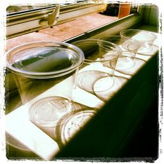 Our Vegware Compostable deli food containers enjoying the sun.