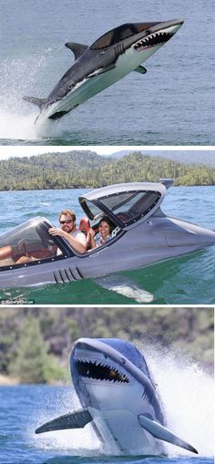 Holy Shit I want this so bad! ALH-weird-boats-shark-inspired-boat Holy Shit I want this so bad! Jet Ski, Ski Boats, Yacht Boat, Cool Inventions, Speed Boats, Small Boats, Boat Plans, Water Crafts, Water Sports