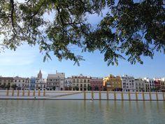 Fishing in Sevilla