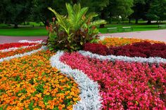 Magical And Beautiful Flower Bed Ideas And Designs Gardening A flower bed is a lovely place to display flowers that you may have gathered from your yard or garden. Flower beds look very pretty and can be beautif... Simple Flowers, Different Flowers, Colorful Flowers, Beautiful Flowers, Garden Renovation Ideas, Shed Landscaping, Landscaping Design, Flower Bed Designs, Flowering Shrubs