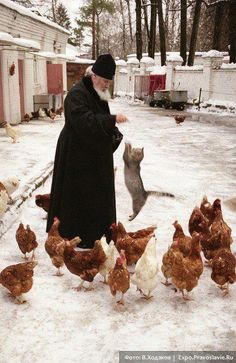 Patriarch Alexy II feeding chickens.