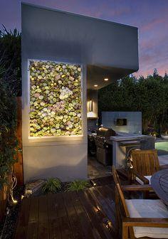 succulent wall spot lit.