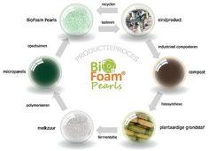 BioFoam® is het eerste biologisch vervaardigde, composteerbare schuim met kenmerken die vergelijkbaar zijn met de eigenschappen en vormvrijheid van EPS (ook bekend als piepschuim).
