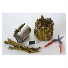 Decorating tin cans with lichen covered branches