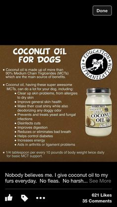 Coconut Oil for Pups* *******Better to start with a lower doseage for a few weeks. Then you may up the dose*****