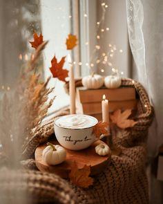 Autumn Cosy, Autumn Tale, Herbst Bucket List, Autumn Flatlay, Autumn Aesthetic, Autumn Photography, Fall Pictures, Hello Autumn, Autumn Inspiration