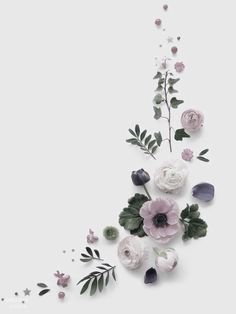 Ideas for wall paper floral simple
