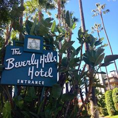 Brunch at the Beverly Hills Hotel before checking out the farmers market in Larchmont Village #beverlyhillshotel #PoloLounge #travel #perfect #Sunday