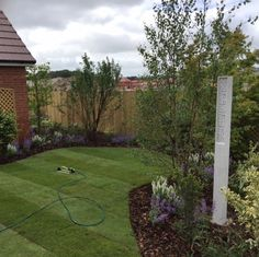 Beepost in a bee friendly garden development by Redrow homes. Garden designed and created by Blackberry Gardens. Redrow Homes, Tower Design, Bee Friendly, Queen, Urban Landscape, Habitats, Beautiful Homes, Garden Design, Architecture Design