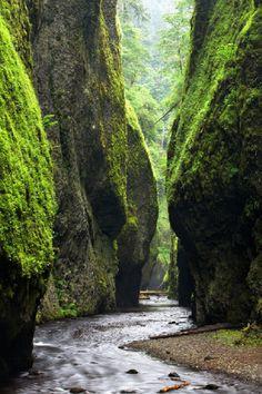 Oneonta Gorge, Oregon Zack Schnepf